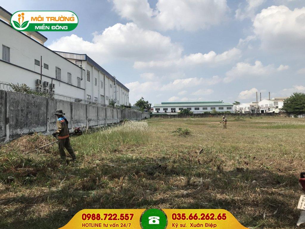 Báo giá dịch vụ cắt cỏ