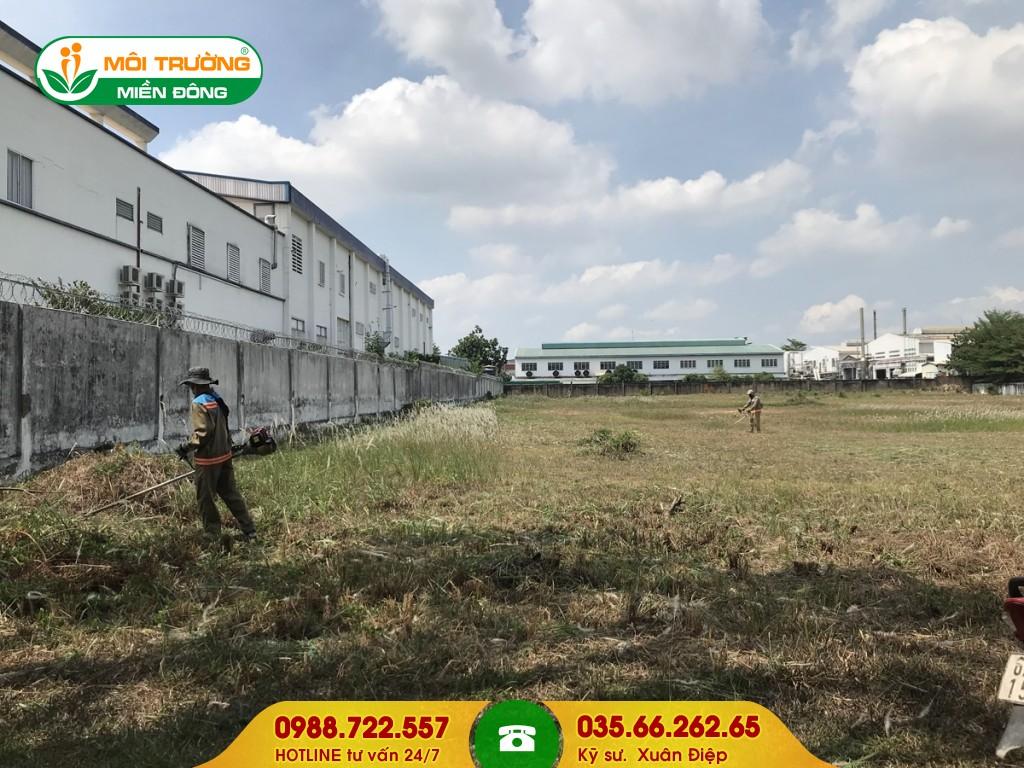 Dịch vụ cắt cỏ công ty